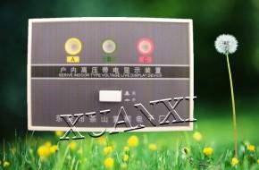 DXN-3.6-40.5/Q户内高压带电显示器出售0769-86174055