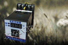 W2K-SG(TH) 智能温度控制器功能特点0769-86174055