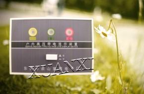 """东莞""""宣熙牌电气"""" DXN8D-3.6-40.5-T高压带电显示器"""