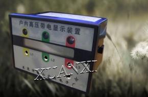 DXN9-3.6-40.5-12T 高压带电显示器--东莞宣熙电子厂