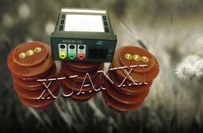 DXN8B-T高压带电显示器供应东莞宣熙电子厂0769-86174055