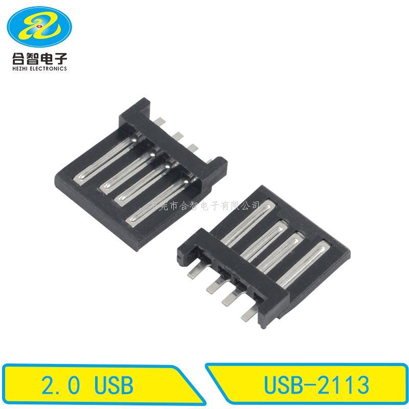 USB 2.0-USB-2113