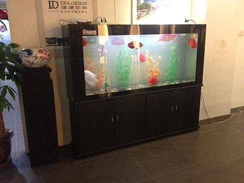 全玻璃直角鱼缸