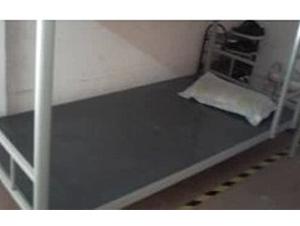 塑胶床板  防臭虫 防白蚁床板