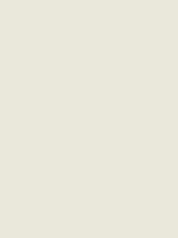 8918-60石膏白