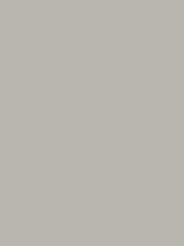 8905-60明灰