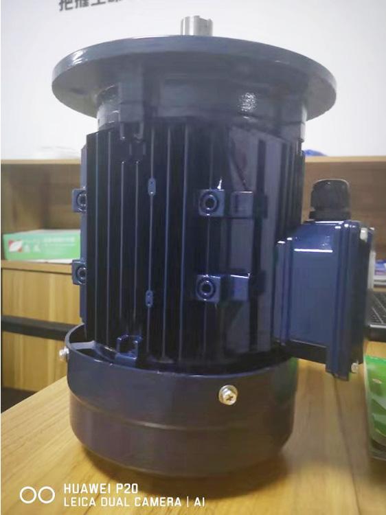 三相耐热电机生产厂家_驱驰电机_交流非标_化工长轴_立卧一体
