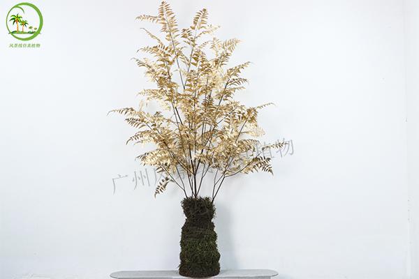 仿真金蕨樹盆栽