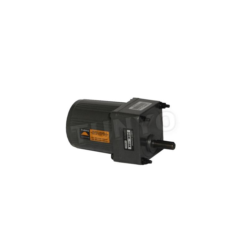M2(4-10W)高温电机