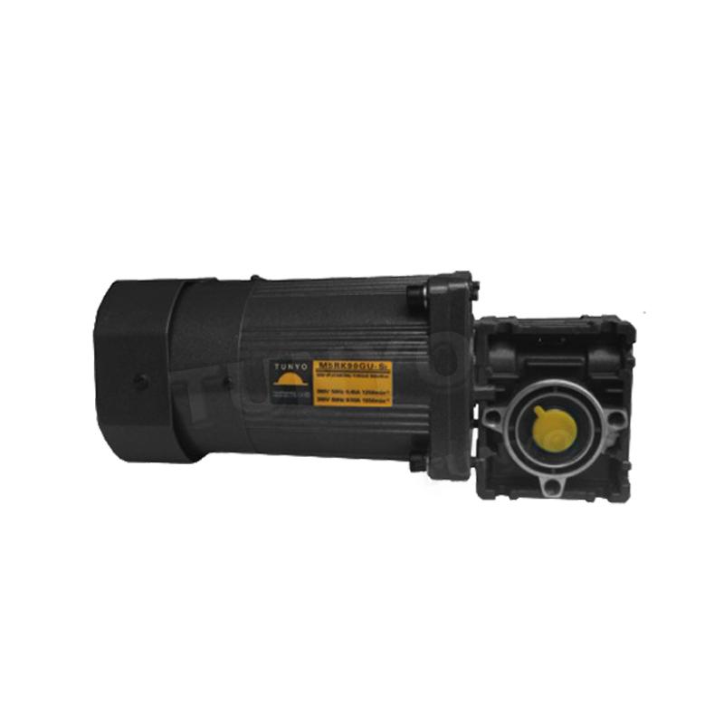 M5(40-120W)蜗轮减速电机