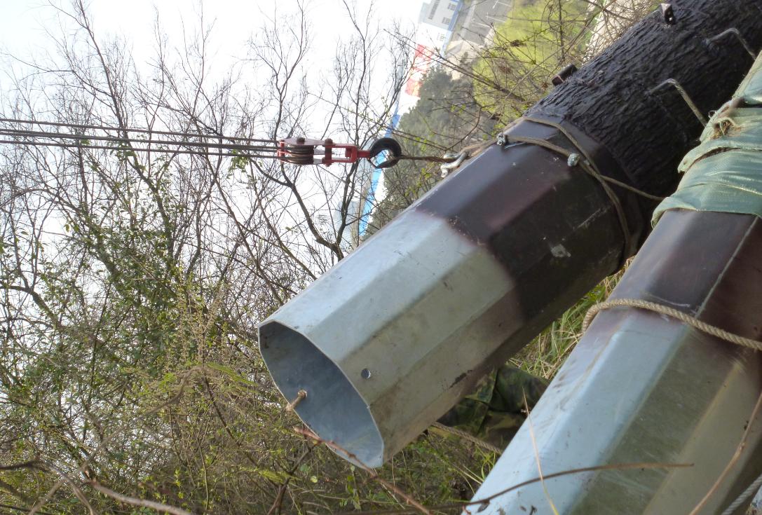 仿真通信信号基站松树塔