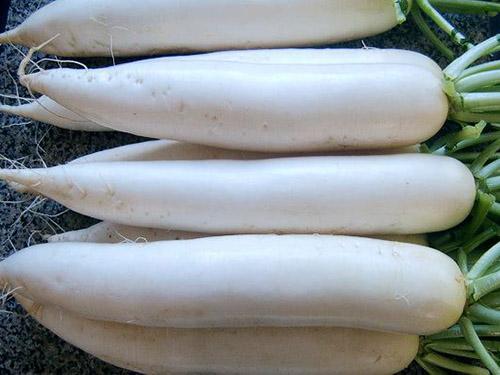 廣西無公害蔬菜配送 山農送菜 服務體貼 質量有保障