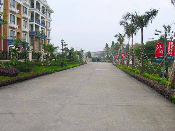 水印长堤园林绿化工程