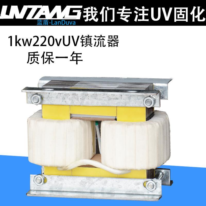 UV镇流器1000W220V-蓝盾UV灯固化光源