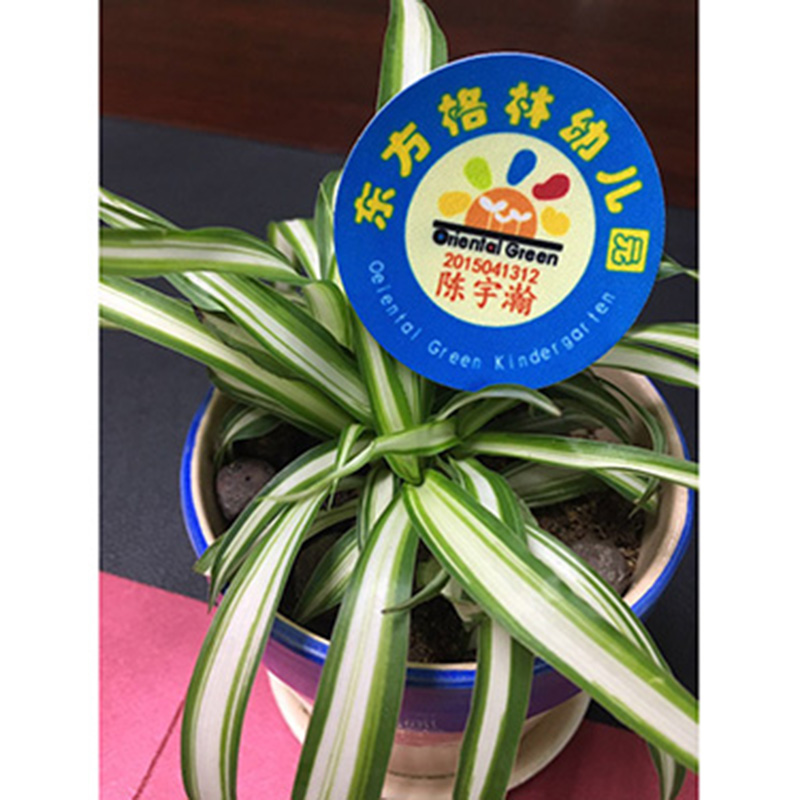 新彩喷绘_臂章_苏州幼儿园园标校标供应生产厂家