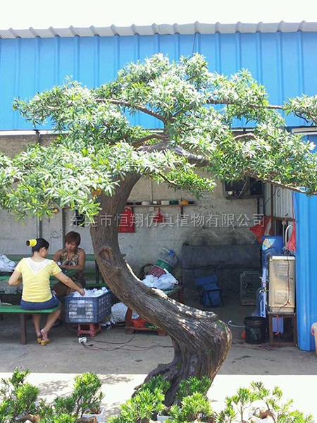 HX80912-3.5米仿真羅漢松樹