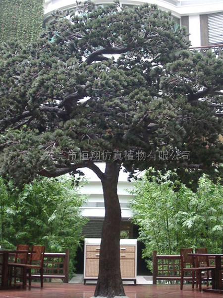 HX80913-4.5米仿真古松樹