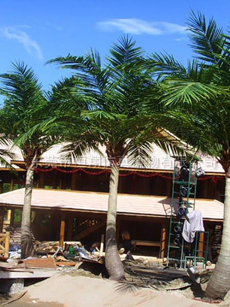 HX8021-4米弯杆仿真椰子树
