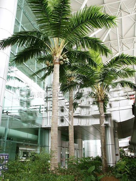 HX8022-6米仿真椰子樹