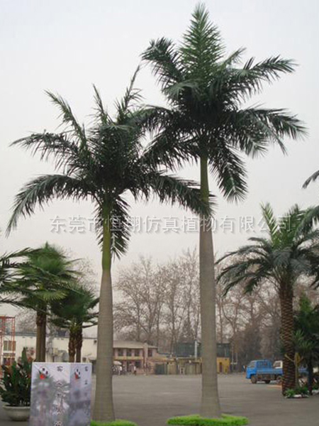HX8023-10米仿真大王椰子树