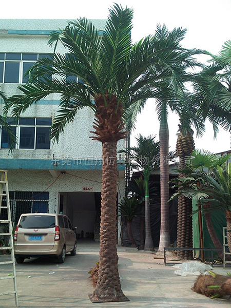 HX8013-5米仿真銀海藻樹