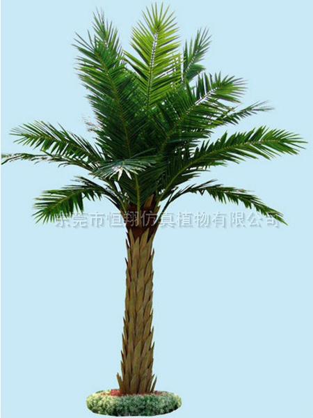 HX8014-4米高中東仿真小海藻樹