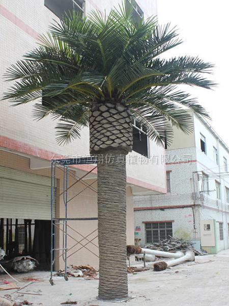 HX8012-9米高中東仿真海藻樹