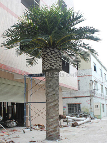 HX8012-9米高中东仿真海藻树