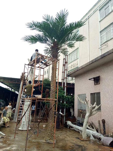 7米銀海藻樹