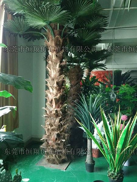 天然人字皮仿真棕櫚樹