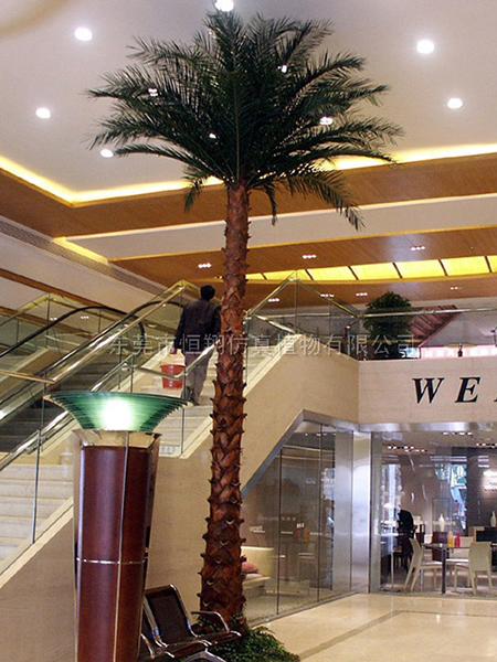 HX8033-6米保鮮仿真棕椰樹