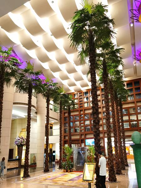10米高室内棕榈树