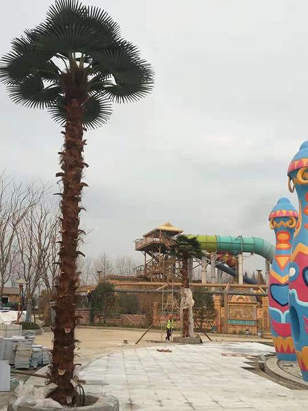7米棕櫚樹