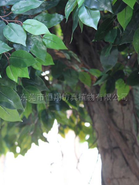 仿真榕樹細節