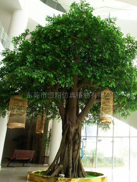 HX8044-仿真6米高榕樹