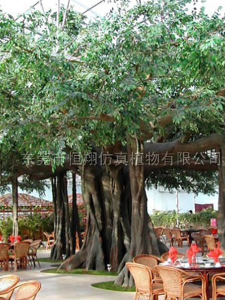 HX80412大型仿真古榕樹