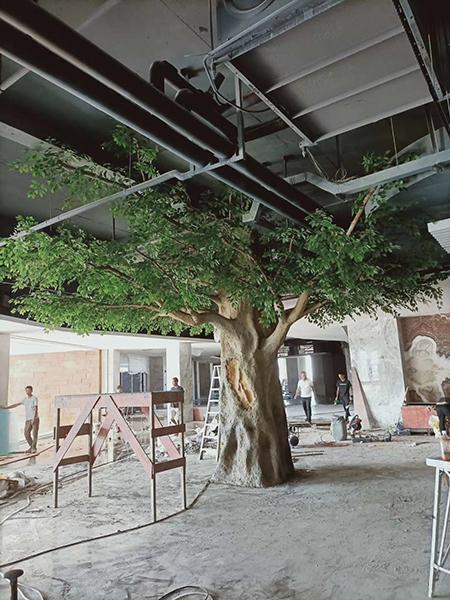 室內3.5米包柱榕樹
