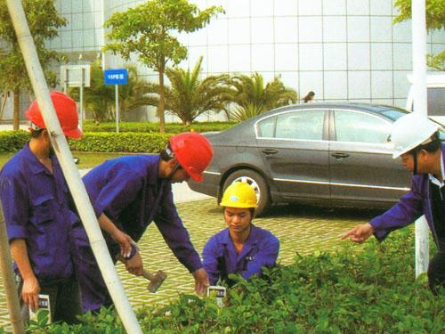 塘廈白蟻防治工程