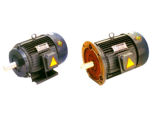 Y系列三相异步电动机