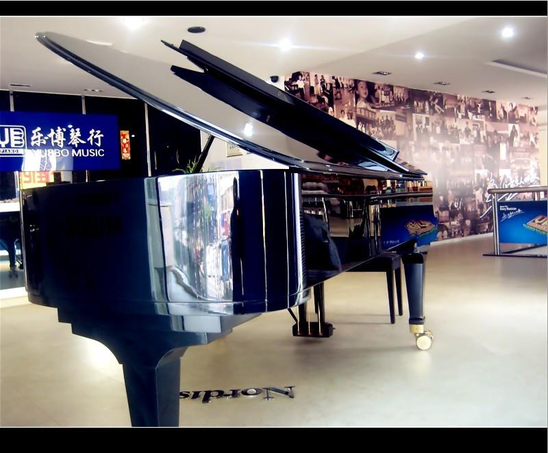 东莞专业的乐器销售琴行