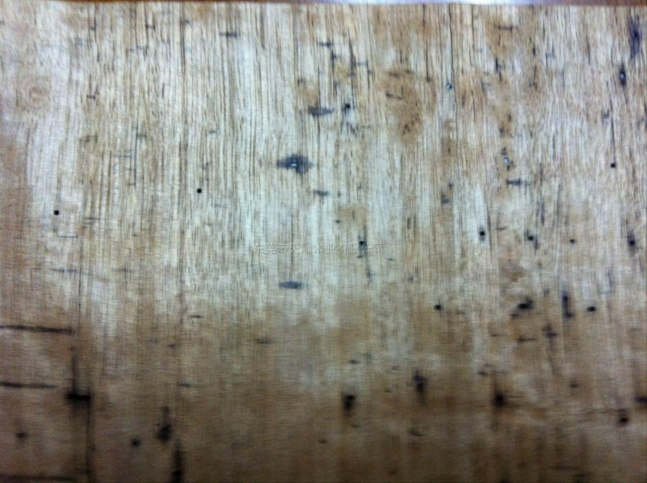 虫蛀木皮 虫蛀木 木皮