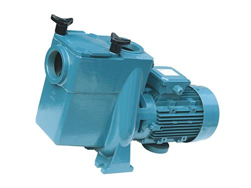 爱克ATS水泵电动式循环过滤管道泵