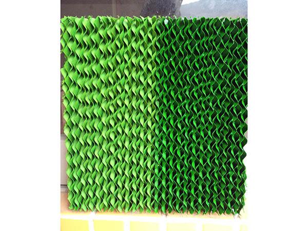 一半干一半湿水绿色湿帘