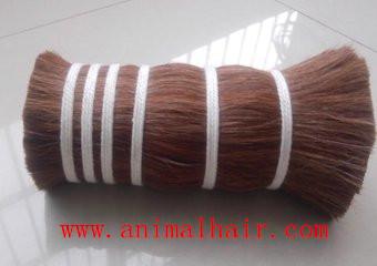 河北厂家供应优质马尾毛,马鬃毛,马毛