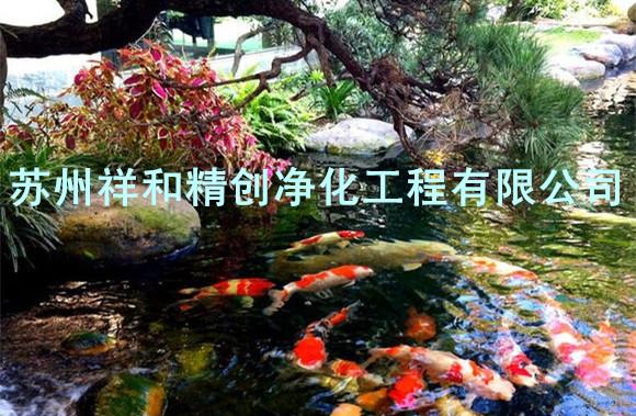 苏州一流的鱼池水处理|鱼池水处理鱼池水发绿青苔信息