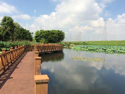 新塘鎮瓜嶺村人工湖生態治理方案