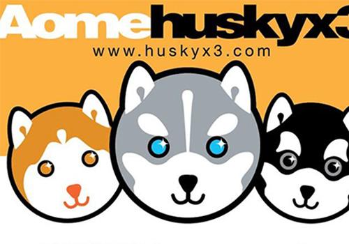 Husky X3