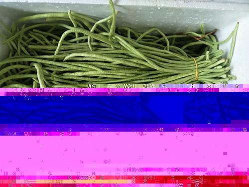 泡沫_小型家用滅火器批發商_誠壹消防科技