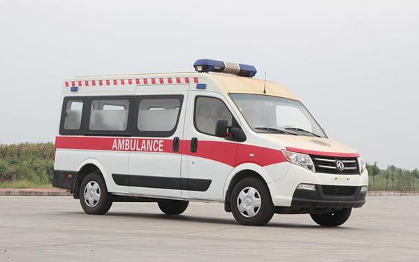 運送型、監護型救護車