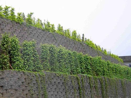 欧式造型风水挡墙
